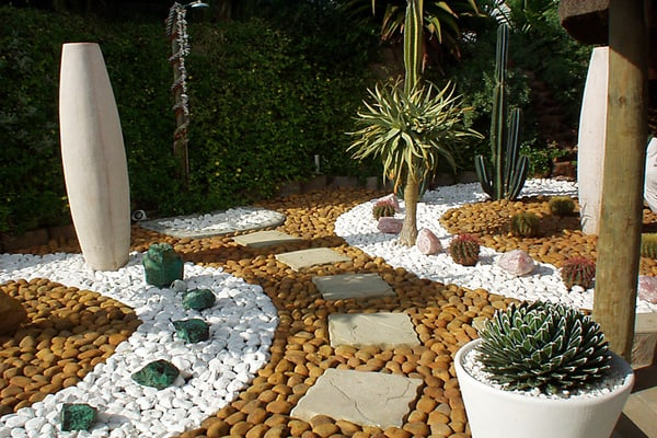 Cactus Backyard Garden Idea