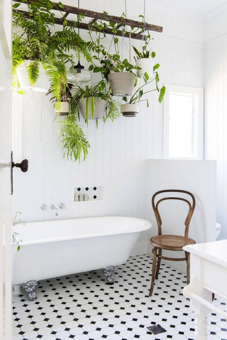 Charming Indoor Plant Décor for the Fancy Bathroom