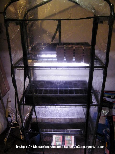 Cheap DIY Indoor Greenhouse