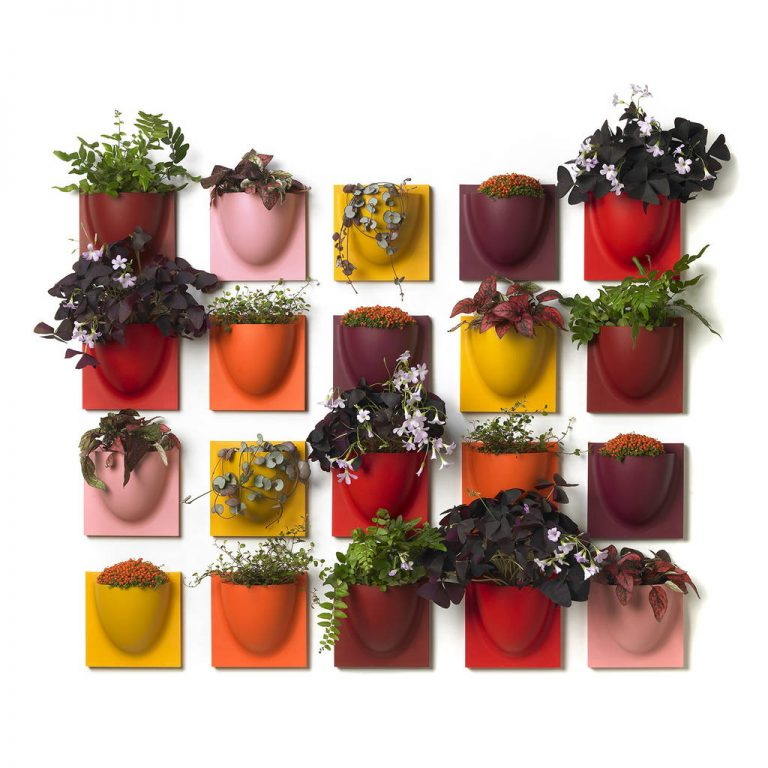 Colorful Mini Indoor Wall Planters