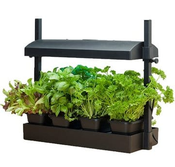 Compact Table Top Indoor Greenhouse