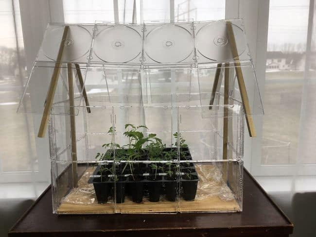 DIY CD Case Indoor Greenhouse