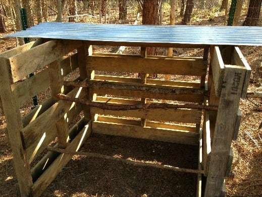 DIY Easy And Cheap Chicken Roost Ideas