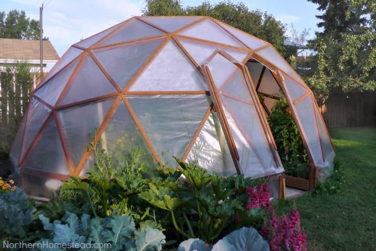 DIY Geodesic Dome Greenhouse