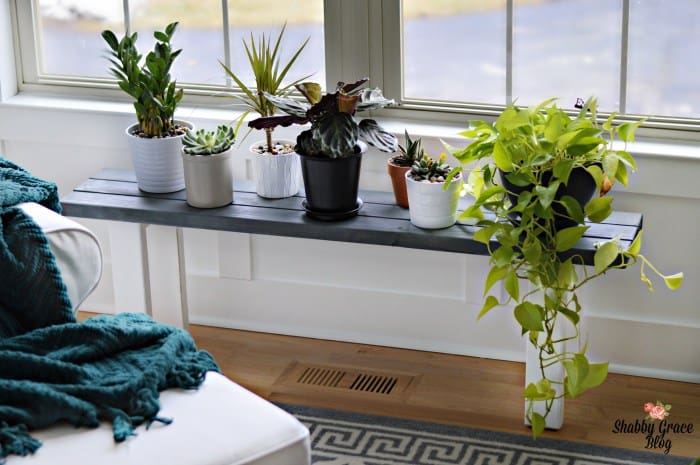 DIY Plant Stand By the Window