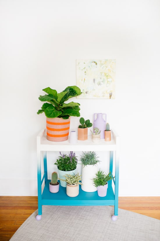 DIY Plant Stand On the Wheels