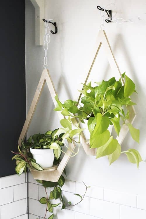 DIY Plywood Wall Planters Indoor