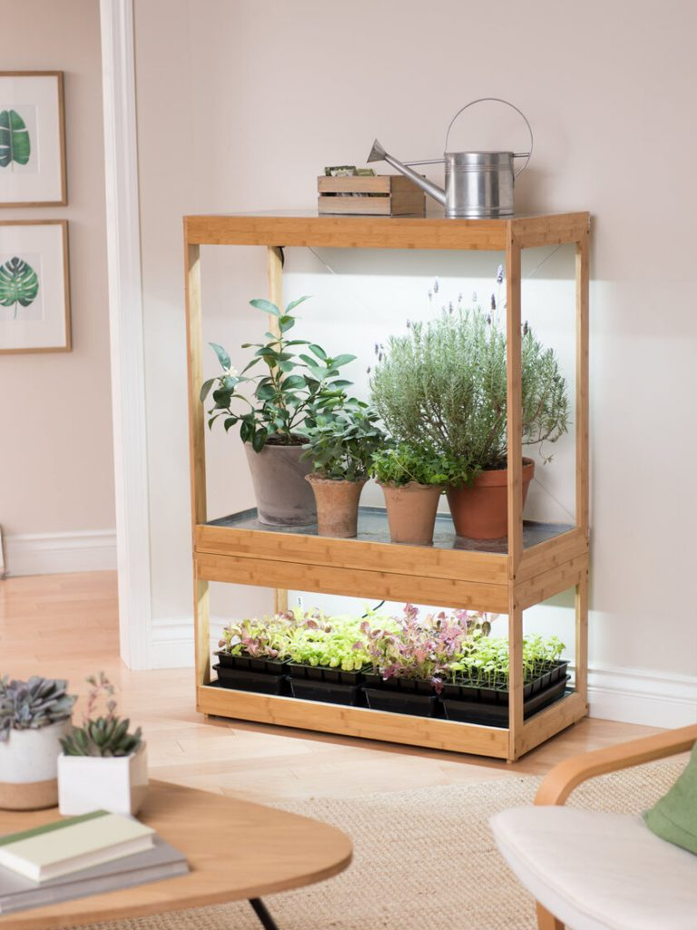 DIY Wooden Indoor Greenhouse