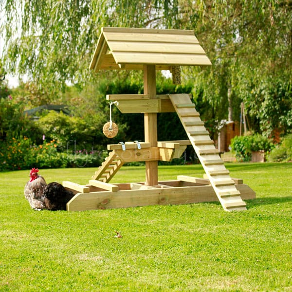 Elegant Chicken Roost Ideas