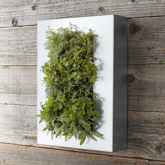 Galvanized Wall Planters Indoor