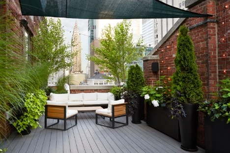 Greenery Accent for the Rooftop Deck