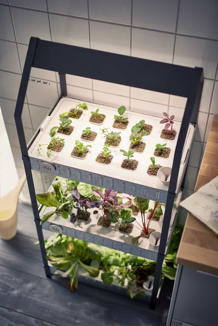 IKEA Indoor Greenhouse