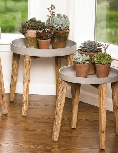 Jungle Stick Plant Stand