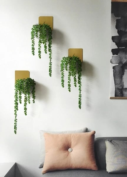 Metal Plate Wall Planters Indoor