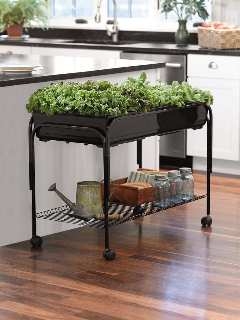 Mobile Salad Indoor Greenhouse