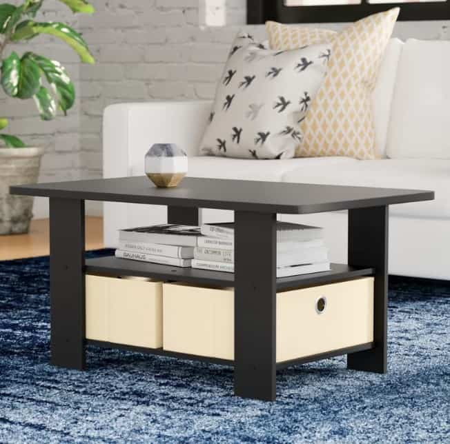 Modern and minimalist Coffee Table with Shelves