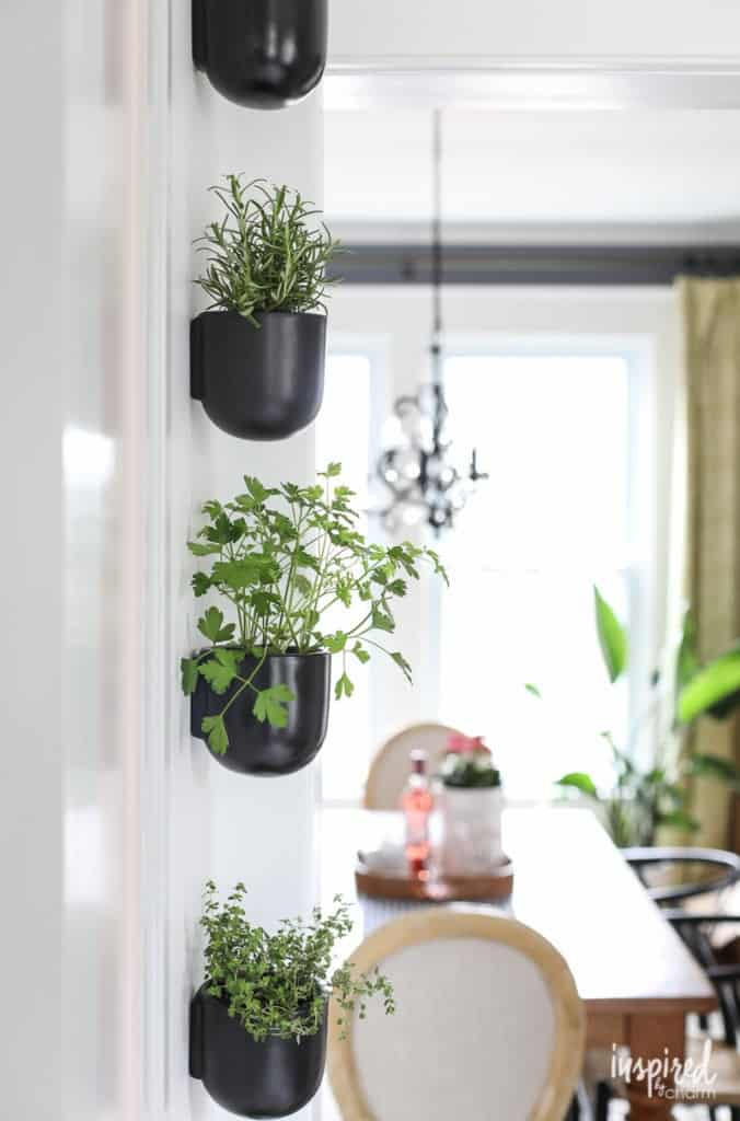 Modern Wall Planters Indoor for Herbs