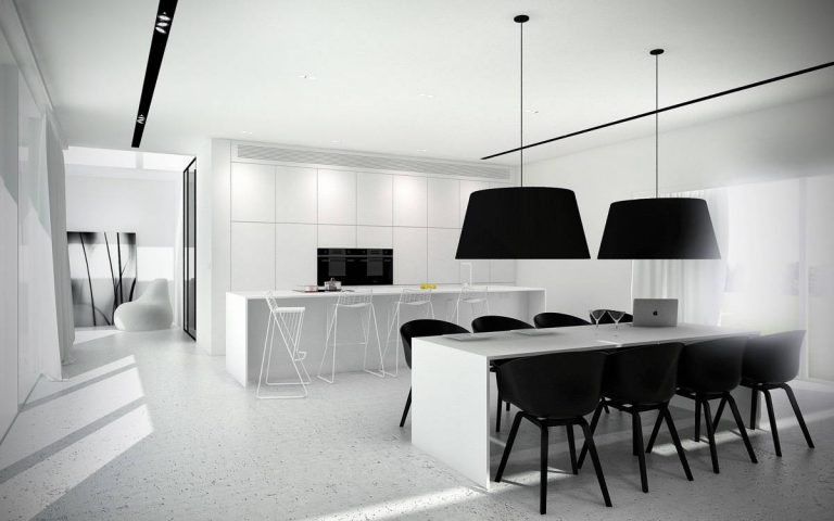 Monochromic Black and White Kitchen Designs