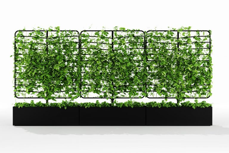 Natural Outdoor Privacy Screens
