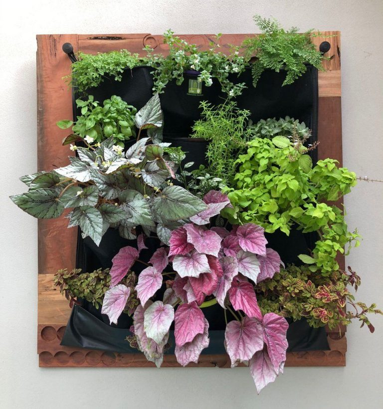 Pocket Wall Planters Indoor