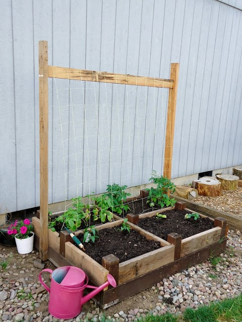 Raised Garden Bed For the Vines