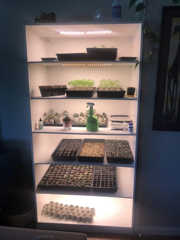 Recycled Cabinet Indoor Greenhouse