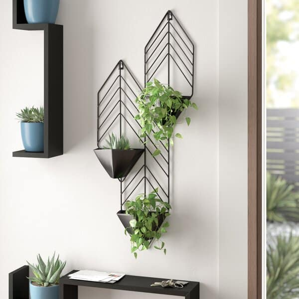 Regnier Iron Wall Planters Indoor