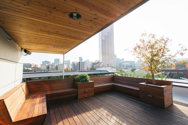 Rooftop Deck With City View