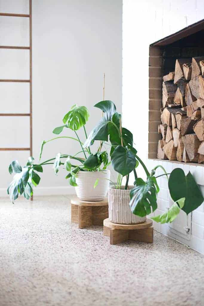 Short DIY Wooden Plant Stand