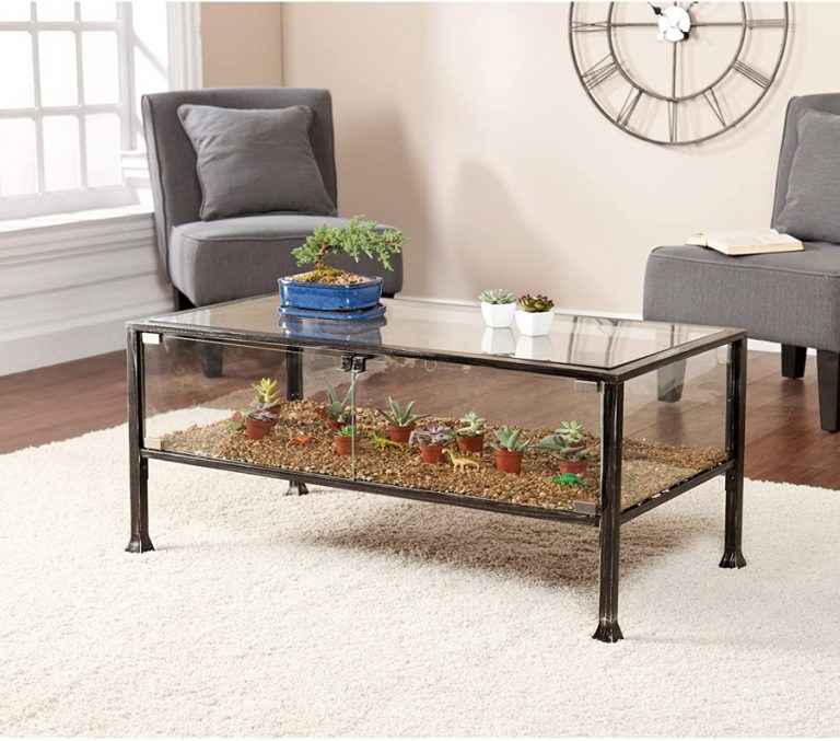 Terrarium Cool Coffee Table