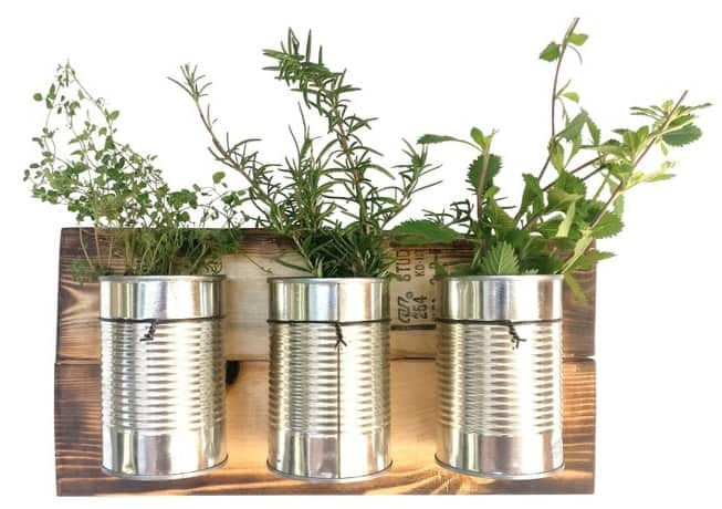 Upcycled Can Wall Planters Indoor