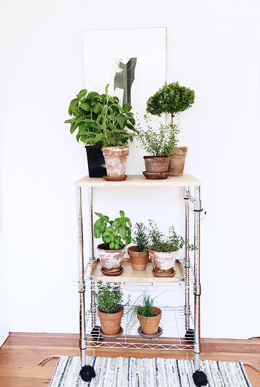 Upcycled Cart Plant Stand