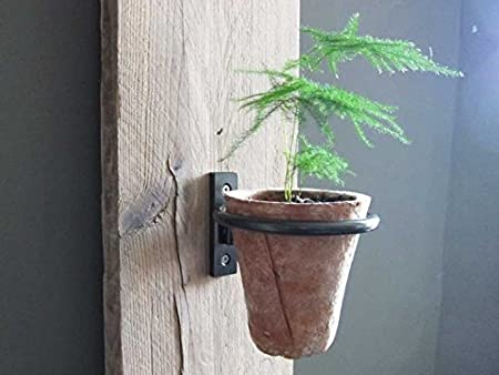 Wall Mounted Pot Ring
