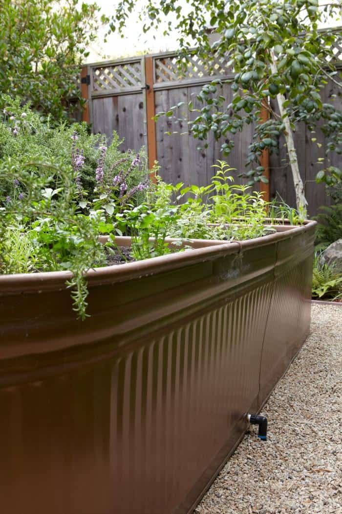 Water Troughs as Raised Garden Beds