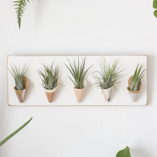 Wood and Ceramic Wall Planters Indoor